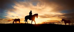 A man rides his horse in front of an Arizona sunset.