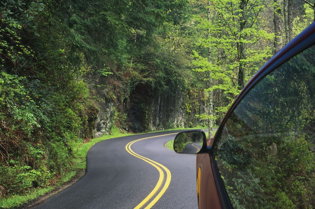 Car drives on a winding road in the woods.